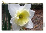 Spring's First Daffodil 1 Carry-all Pouch