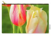 Spring's Garden Carry-all Pouch