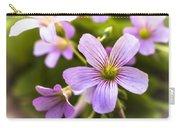 Springtime Blooms Violet Wood Sorrel 3 Carry-all Pouch