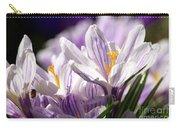 Springtime Color Carry-all Pouch