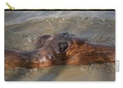 Springtime Driftwood Carry-all Pouch