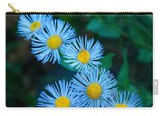 Springtime In Grand Teton Carry-all Pouch