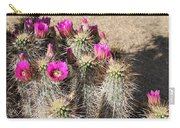 Springtime In The Desert Carry-all Pouch