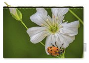 Springtime Ladybug Carry-all Pouch