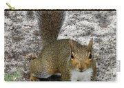 Squirrel 4 Carry-all Pouch