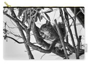 Squirrel In Low Branches Carry-all Pouch