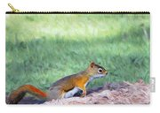 Squirrel In The Park Carry-all Pouch