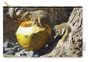 Squirrel On The Coconut Carry-all Pouch