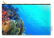 St. Thomas Seascape Carry-all Pouch