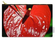 A Point To Your Heart Carry-all Pouch