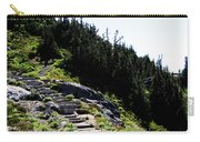 Stairs Along Skyline Trail Carry-all Pouch
