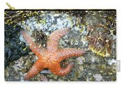 Starfish Running Carry-all Pouch