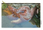Starfish Sandwhich Carry-all Pouch