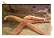 Starfish Carry-all Pouch by Svetlana Sewell
