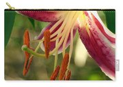 Stargazer Lily 02 Carry-all Pouch