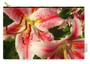 Stargazers In Evening Light Carry-all Pouch