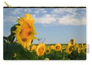 Staring Into The Sun Carry-all Pouch