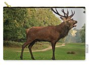 Stately Stag Carry-all Pouch