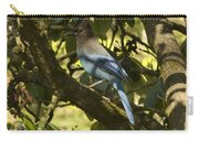 Stellar Jay 2 Carry-all Pouch