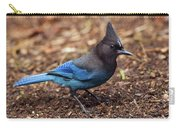 Stellar's Jay II Carry-all Pouch