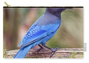 Steller's Jay IIi Carry-all Pouch