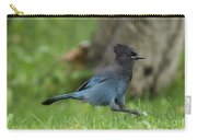 Steller's Jay Landing Carry-all Pouch