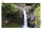 Step Falls Pipiwail Trail 3 Carry-all Pouch