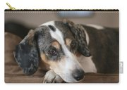 Stewie - Family Dog Carry-all Pouch
