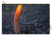 Stinkhorn Fungus With Fly Feeding Carry-all Pouch