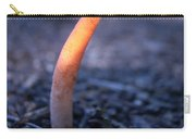 Stinkhorn Rising Carry-all Pouch
