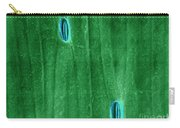 Stomata In A Green Onion Leaf, Esem Carry-all Pouch