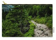 Stone Walkway Into The Valley Carry-all Pouch
