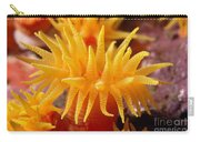 Stony Cup Coral Carry-all Pouch