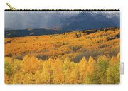 Storm At Ohio Pass During Autumn Carry-all Pouch