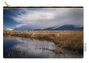 Storm Reflections Carry-all Pouch