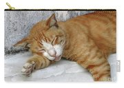 Stray Cat Sleeps On The Floor-1 Carry-all Pouch
