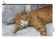 Stray Cat Sleeps On The Floor-2 Carry-all Pouch