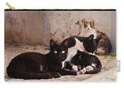 Street Cats - Portugal Carry-all Pouch