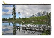 String Lake In Grand Tetons Carry-all Pouch