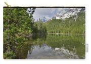 String Lake Teton Reflection Carry-all Pouch