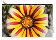 Striped Daisy Square Carry-all Pouch