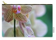 Striped Orchid 1 Carry-all Pouch