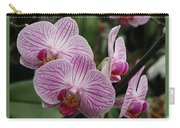 Striped Orchids With Border Carry-all Pouch