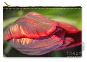Striped Red Tulip Carry-all Pouch