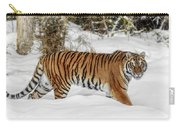 Stroll In The Snow Carry-all Pouch