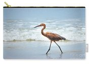 Strolling Carry-all Pouch by Todd Blanchard