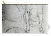 Study Of A Dog And A Cat Carry-all Pouch