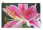 Stunning Stargazer  Carry-all Pouch