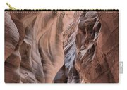 Subdued Colors Of Buckskin Carry-all Pouch