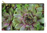Succulent 3 Carry-all Pouch